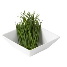Fresh Herbs Chives 20G